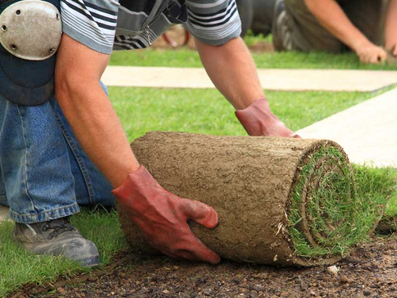 Landscaping Near Me - Landscaping Companies
