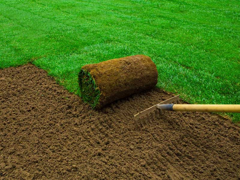 Sod Installation Near Me - H&L Landscapers