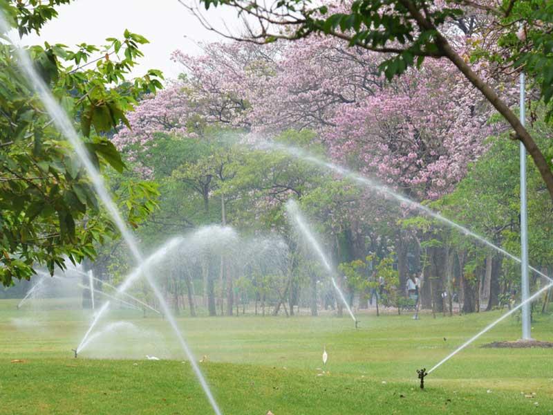 Sprinkler Installation Company